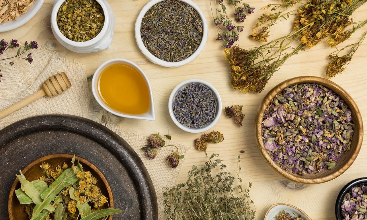 healthscout-therapieform-Phytotherapie