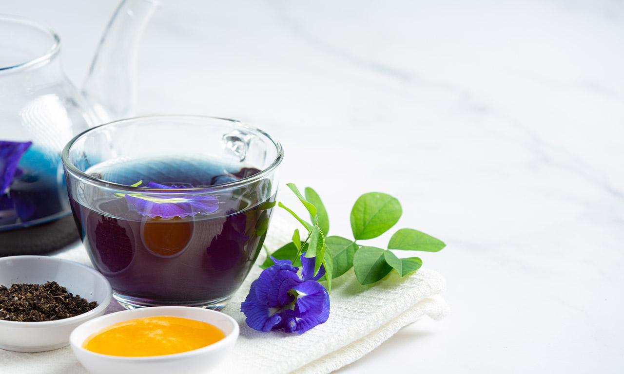 healthscout-therapieform-koerper-entgiften